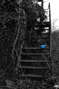 L'Escalier Inaccessible